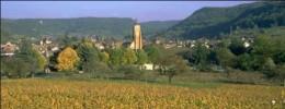 Arbois - Vins du Jura